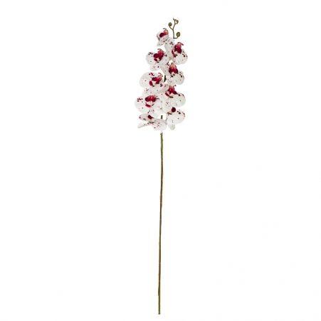 7141/А2785-05/23-1 Орхидея h108см(латекс)(бел.с бордовым)