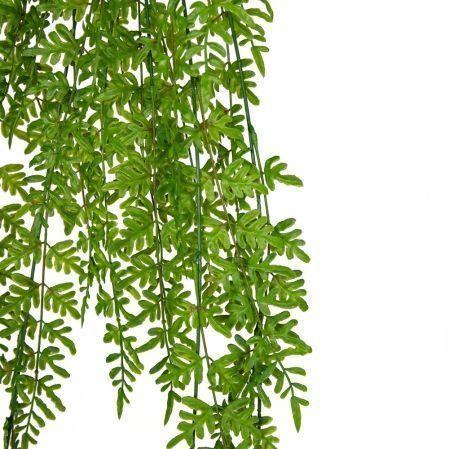 7143/А2790-116 Папоротник щитовник ампельный зеленый h100