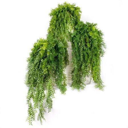 КС115(з.) Микс ампельных растений в горшке d15см (свес 70-80см)