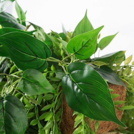 К362(з.)Композиция с ампельными растениями в кокосовом боксе (45*12*10)