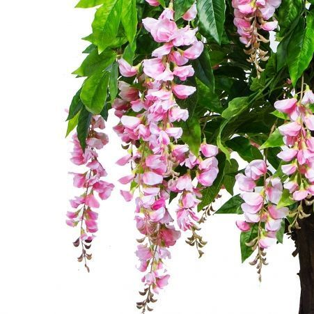 160/ОС/424-3 Глициния(вистерия) розовая h160см (латекс)