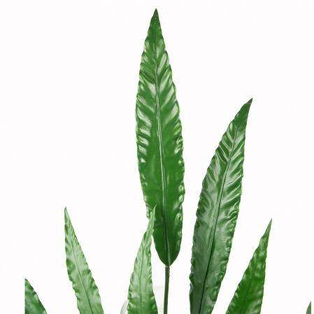 7143/0033-12 Куст Калатея зеленый искусственный, h93см (7л.)