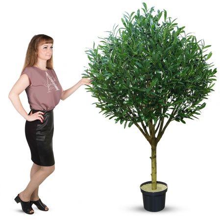 180/О/175 Оливковое дерево с плодами h180см(латекс)