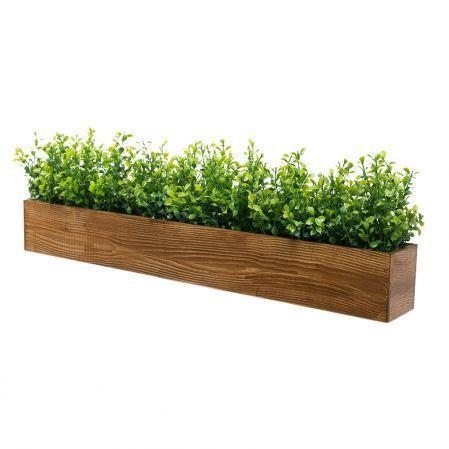 ТДЯ004-1(з.) Самшит в деревянном ящике (светлый орех) 75*9,5*h10см