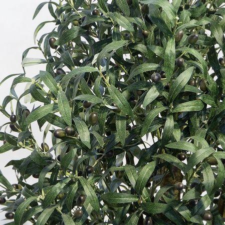 75/Ш/410(н)(Promo) Оливковое дерево с плодами h75см