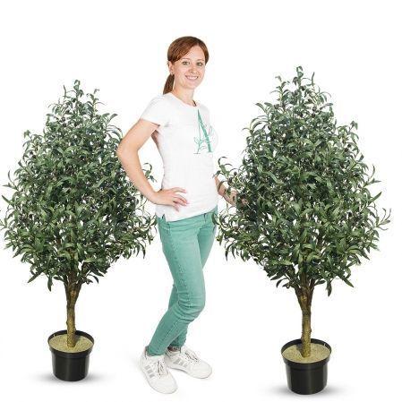 140/О/410(Promo) Оливковое дерево c плодами h140см