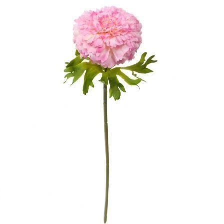 7141/А2790-014/1 Цинния розов.*1  h35см(868)
