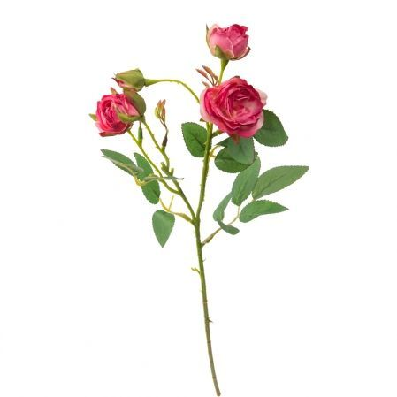 7141/А2790-08/15 Роза кустовая мелк.малинов.h42см(354)
