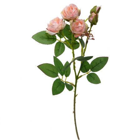 7141/А2790-08/13 Роза кустовая мелк.персик.h42см(354)