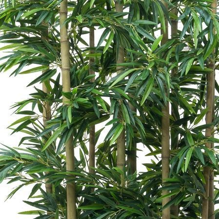 Ш250/75 Ширма бамбук h250 в кокосовом боксе 65*15*h20