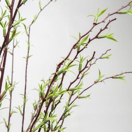 ККДД180/195(з.) Кокедама d40см Дерево с молодыми побегами h180см