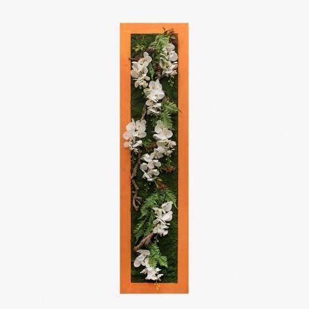 СКФ06/3(з.) Фитокартина в оранж. раме с орхид.(50х200см)