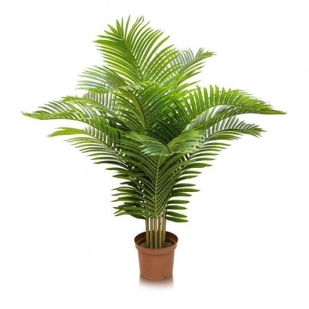 Кустовая пальма