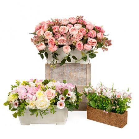 Цветущие растения в ящиках и боксах