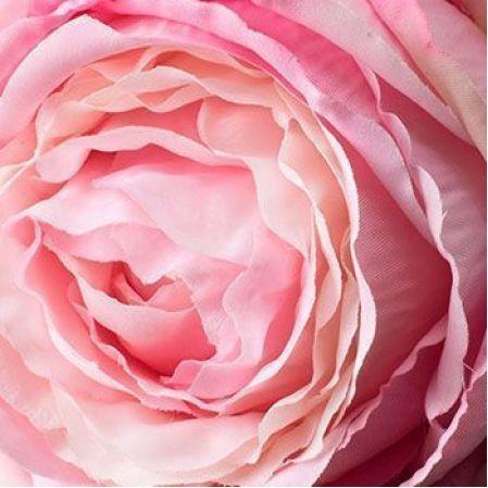 Розовые, персиковые