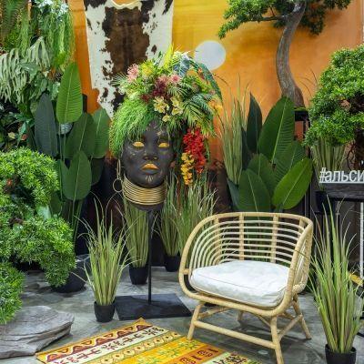 Африканские джунгли