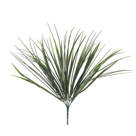 Трава, Осока кустовая